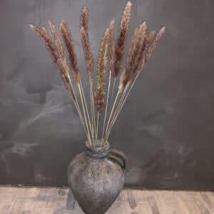 BloomitUp - Pampas pluimen | 10 stuks 1